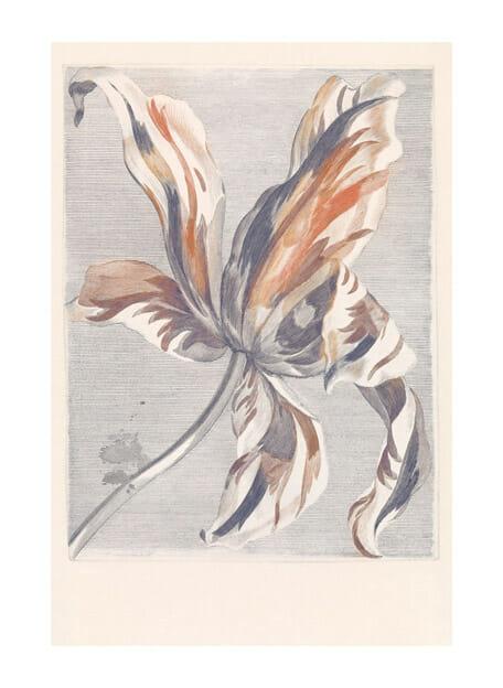 Tulip Teyler marine Masterpiece fotobehang van Eijffinger