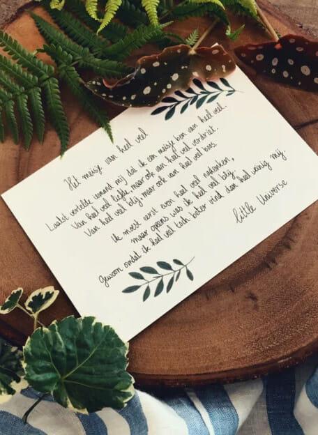 Little Universe postcard 'Het meisje van heel veel'