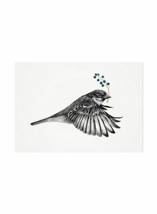 vliegende mus ansichtkaart